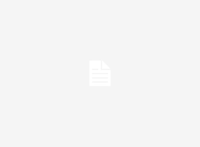 Tri Color Pembroke Welsh Corgi – Profile | Care | Facts | Traits