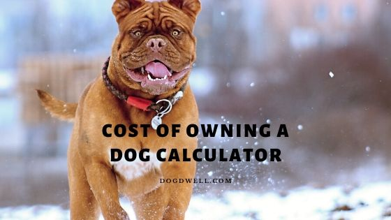 cost of owning a dog calculator