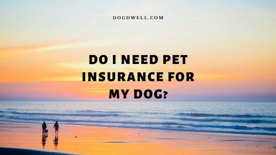 do i need pet insurance for my dog